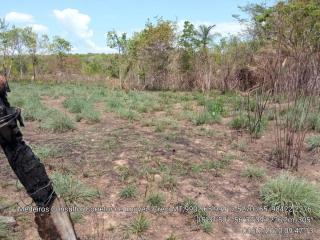 Cuiabá: VENDO!!! Um sítio de 33 hectares na região da sadia 3 a 50 km do trevo do lagarto 4