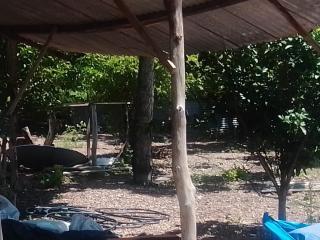 Cuiabá: VENDO!!! Uma chácara de 3.5 Hectares na região do capão grande na cidade de Várzea Grande-MT 15