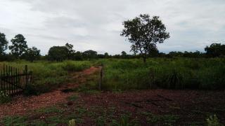 Cuiabá: VENDO!!! Uma chácara de 3.5 Hectares na região do capão grande na cidade de Várzea Grande-MT 22