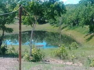 Cuiabá: VENDO!!! Uma chácara de 3.5 Hectares na região do capão grande na cidade de Várzea Grande-MT 8
