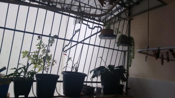 Vitória: Apartamento para venda em Praia do Canto ES, 3 quartos, suíte, 125m2, escada, terceiro andar, dependência de empregada, armários embutidos, 1 vaga de garagem 11