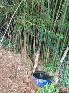 Baependi: Sitio excelente de 26 Hectares em Baependi/MG 13