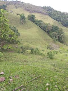 Baependi: Sitio excelente de 26 Hectares em Baependi/MG 7