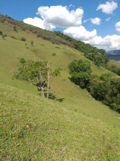 Baependi: Sitio excelente de 26 Hectares em Baependi/MG 8