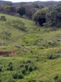 Baependi: Sitio excelente de 26 Hectares em Baependi/MG 9