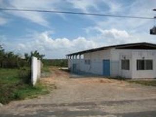 São Luis: Imóvel Industrial à Venda em São Luis 3
