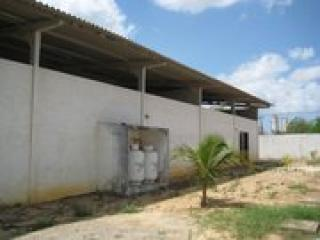 São Luis: Imóvel Industrial à Venda em São Luis 6