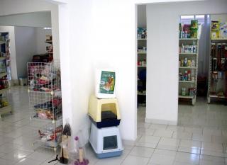 São José dos Campos: Comercial 550m²  ao lado Hospital Santos Dummont SJCampos 2