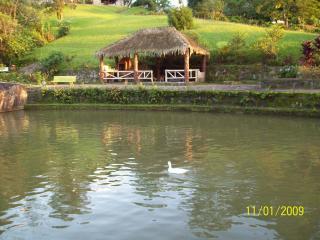 Guapimirim: Sítio Cinematográfico Dentro da Natureza - Excelente Lugar 8