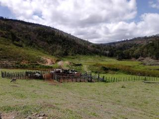 Joaíma: Fazenda de 600 Hectares em MG, Barata, C/ Muita Água, Boa Para Pasto Ou Plantação! 2