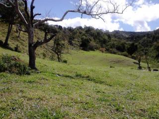 Joaíma: Fazenda de 600 Hectares em MG, Barata, C/ Muita Água, Boa Para Pasto Ou Plantação! 6