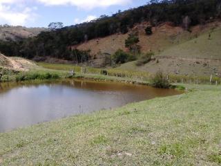 Joaíma: Fazenda de 600 Hectares em MG, Barata, C/ Muita Água, Boa Para Pasto Ou Plantação! 8