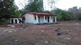 Caxias: Propriedade de 9 mil HA em Caxias no Maranhão 8