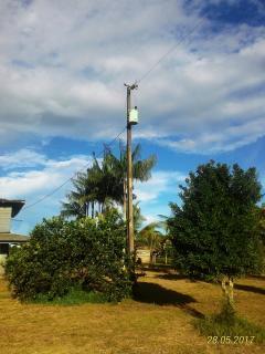 Tartarugalzinho: Fazenda de 236 ha no Amapá 1