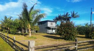 Tartarugalzinho: Fazenda de 236 ha no Amapá 4