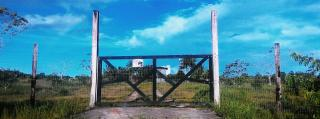 Tartarugalzinho: Fazenda de 236 ha no Amapá 5