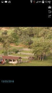 Silvianópolis: VENDE-SE FAZENDA EM SILVIANÓPOLIS - MG! POSSUI 45 ALQUEIRES 3