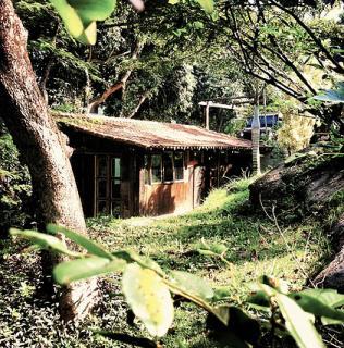Rio de Janeiro: Vendo casa para quem busca tranquilidade e ama a natureza. 6