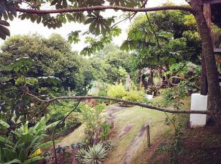 Rio de Janeiro: Vendo casa para quem busca tranquilidade e ama a natureza. 7