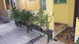 Rio de Janeiro: Ótima quitinete no bairro de Vista Alegre 7