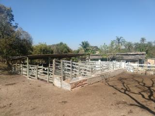 Esmeraldas: Fazenda em Esmeraldas/MG 1