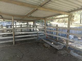 Esmeraldas: Fazenda em Esmeraldas/MG 3
