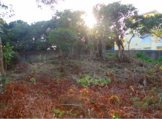 Florianópolis: Terreno na Praia do Santinho - Florianópolis SC 1