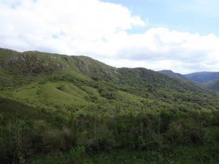 Encruzilhada do Sul: FAZENDA 6