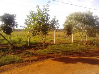 Ourinhos: Terreno/chácara De 1.500 M2 Em Ourinhos/sp 1