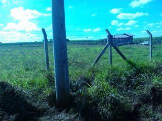 Ourinhos: Terreno/chácara De 1.500 M2 Em Ourinhos/sp 4