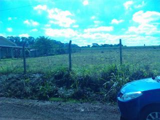 Ourinhos: Terreno/chácara De 1.500 M2 Em Ourinhos/sp 5