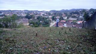 Joinville: vendo terreno 1