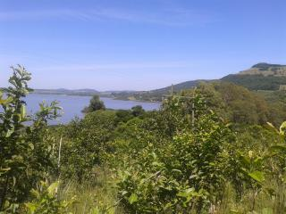 Santo Antônio da Patrulha: Santo Antônio da Patrulha - sítio grande, 97 m de frente para RS-030, vista p/ Lagoa dos Barros 2