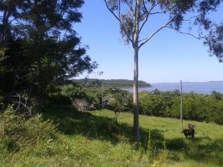 Santo Antônio da Patrulha: Santo Antônio da Patrulha - sítio grande, 97 m de frente para RS-030, vista p/ Lagoa dos Barros 4