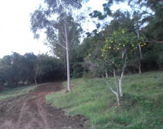 Santo Antônio da Patrulha: Santo Antônio da Patrulha - sítio grande, 97 m de frente para RS-030, vista p/ Lagoa dos Barros 6