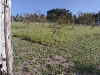 Igaratá: Sitios de 11.300 m2 a 80 km de SP-IGARATA 1