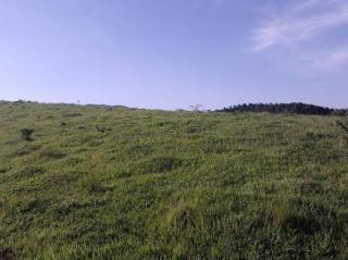 Igaratá: Sitios de 11.300 m2 a 80 km de SP-IGARATA 4