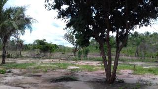 Timon: Terreno com 2 Hectares em Timon - MA 1