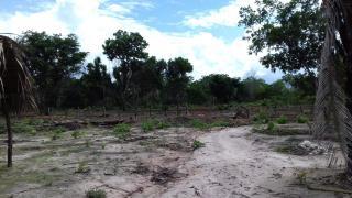 Timon: Terreno com 2 Hectares em Timon - MA 5