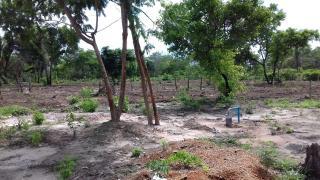 Timon: Terreno com 2 Hectares em Timon - MA 6