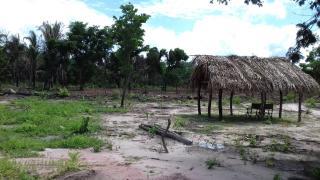 Timon: Terreno com 2 Hectares em Timon - MA 7
