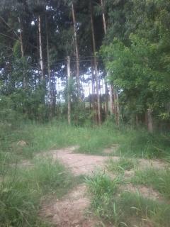 Camaquã: Vendo Área de 3,49 Hectares dentro da Cidade de Camaquã 1
