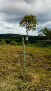 Esmeraldas: Vendo lote 1.000 m² em Esmeraldas 1