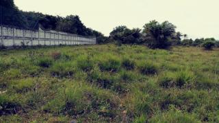 Camaçari: terreno escriturado em condominio fechado em jauá 1030 m2 2