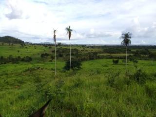 Água Azul do Norte: Fazenda para Gado no Sul do Pará 4