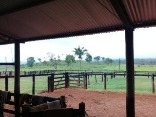 Água Azul do Norte: Fazenda para Gado no Sul do Pará 6