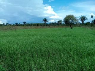 Água Azul do Norte: Fazenda para Gado no Sul do Pará 7