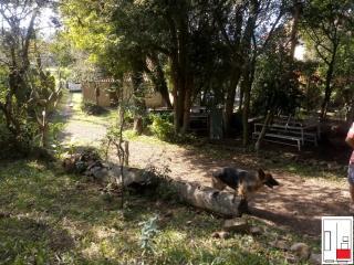 Porto Alegre: Oportunidade de investimento 5
