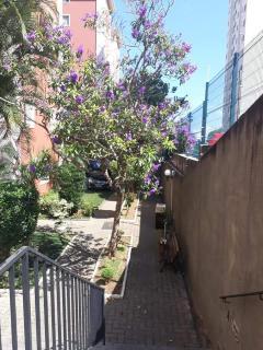 São Paulo: Apartamento Padrão 6
