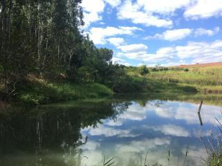 Itapira: Lindo sítio rico em água direto com o proprietário 1